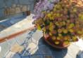 бетонова маса за двора с камък
