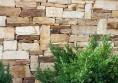 каменен зид раймар (6)
