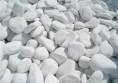 бели камъни градина (2)
