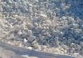 бели овални камъни 1 - 4 см (4) (Small)