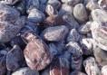 декоративни овални камъни раймар (5)