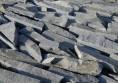 кокали сиви стенари (5)