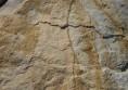 кремаво жътл естествен камък  (5)