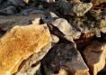 камъни за алпинеум цени