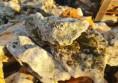 камъни за алпинеум цена