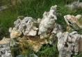 алпинеум камъни