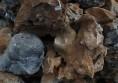 декоративни камъни за градина и двор от раймар (15) (Small)