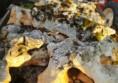 камъни за алпинеум декорация (8)