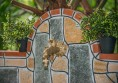 garden raimar (3) (Small)