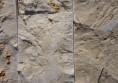 мраморна облицовка интериор дизайн камък в хола (1)