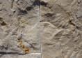 мраморна облицовка интериор дизайн камък в хола (4)