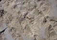 мраморна облицовка интериор дизайн камък в хола (8)