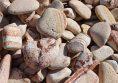 декоративни камъчета дъга за настилка цена