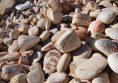 камъчета дъга за декорация цени